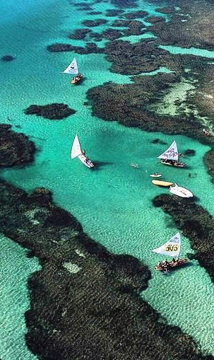 Beautiful Porto de Galinhas ~ Brazil.