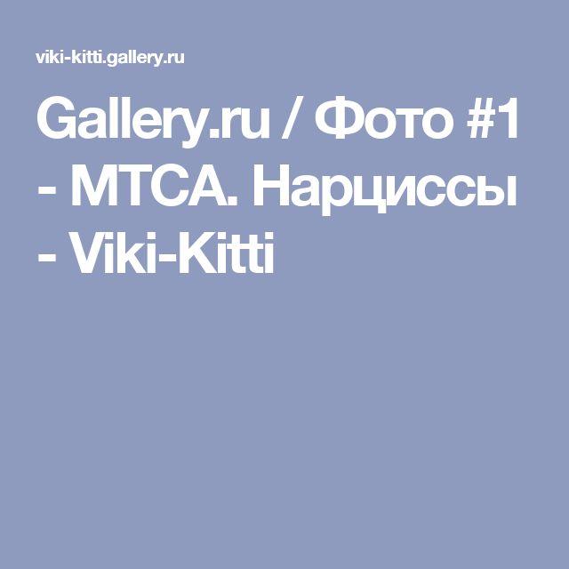 Gallery.ru / Фото #1 - МТСА. Нарциссы - Viki-Kitti