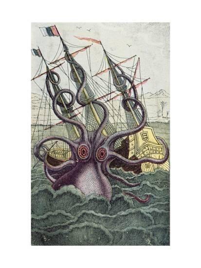 Best 25+ Octopus illustration ideas on Pinterest | Octopus ...