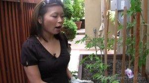 Vegetable gardening with Loni episode #2: Micro irrigation | Stark Insider