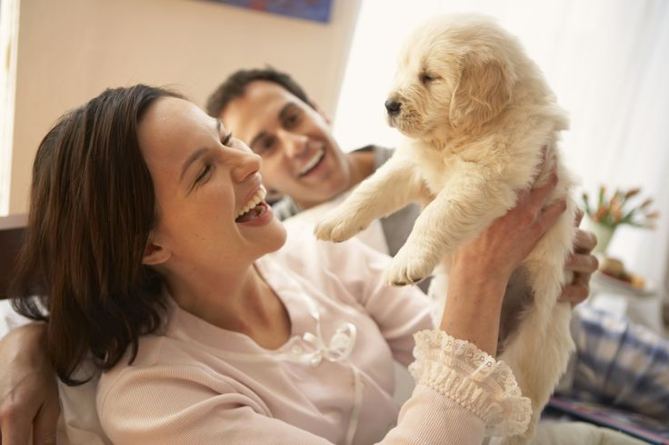 Pets: When Life Becomes A Gift
