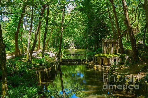 Greenery at Gardens of Pena, SIntra, Portugal by Anastasy Yarmolovich #AnastasyYarmolovichFineArtPhotography  #ArtForHome #Portugal