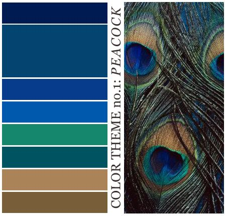 best 25 peacock color scheme ideas on pinterest