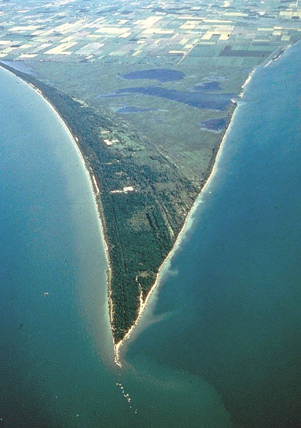 A lush Carolinian forest oasis at the southern tip of Canada, Point Pelee National Park