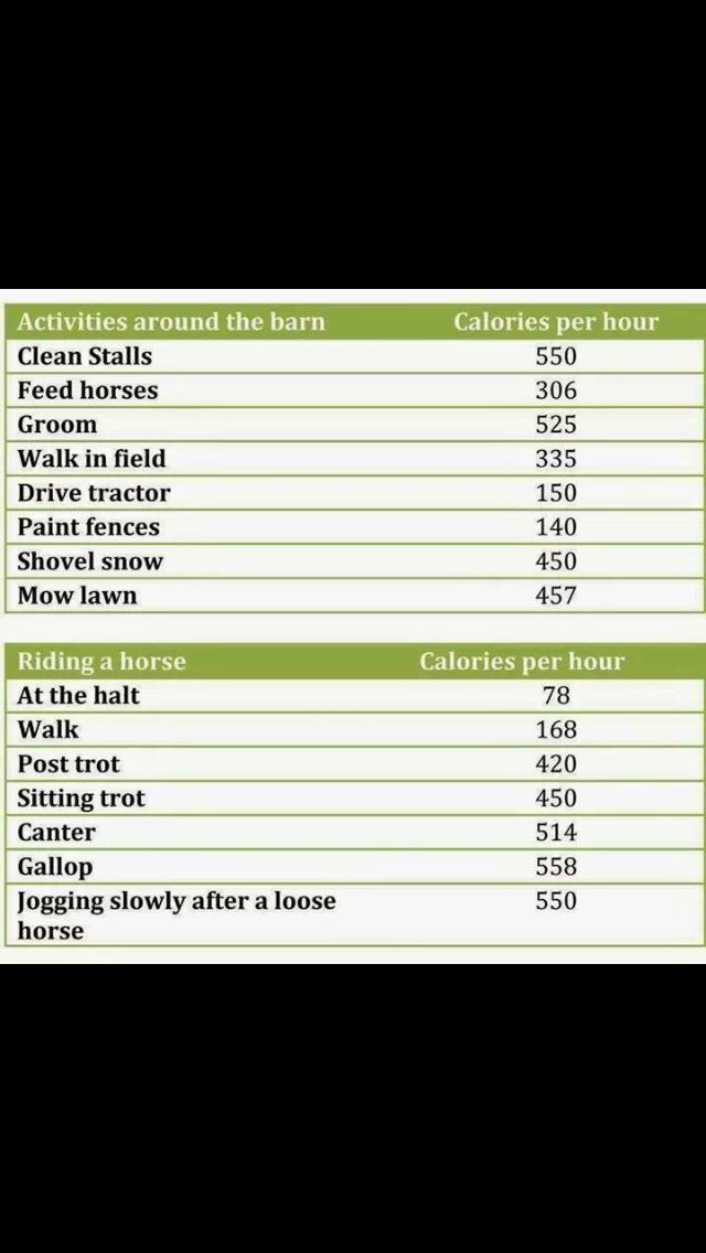 Barn Chores/riding and the calories it burns.... Showing this to people who say horseback riding isn't a sport!