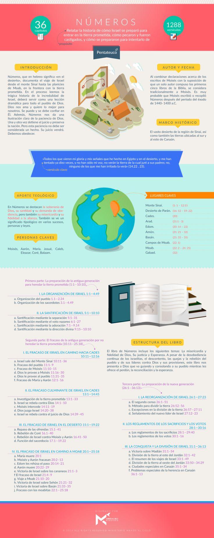 Infografía sobre el libro de Números. #infobiblia  Puedes descargar esta infografía aquí  Síguenos en: Instagram | Facebook | Twitter