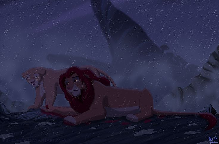 Lion King Kopa Died