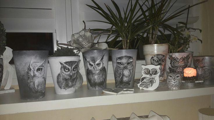 Handmade#owls#pot#doniczka#sowa
