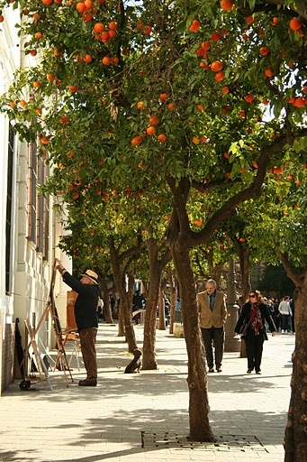 Sevilla, Andalucía, Spain. http://www.costatropicalevents.com/en/costa-tropical-events/andalusia/welcome.html