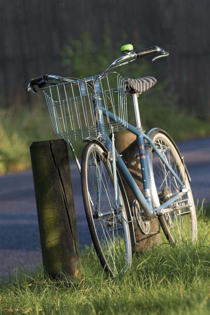 Electra Fahrrad mit Liix Zubehör