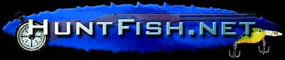Website For Sale  hunting fishing huntfish.net domain name and  huntfish.ws real