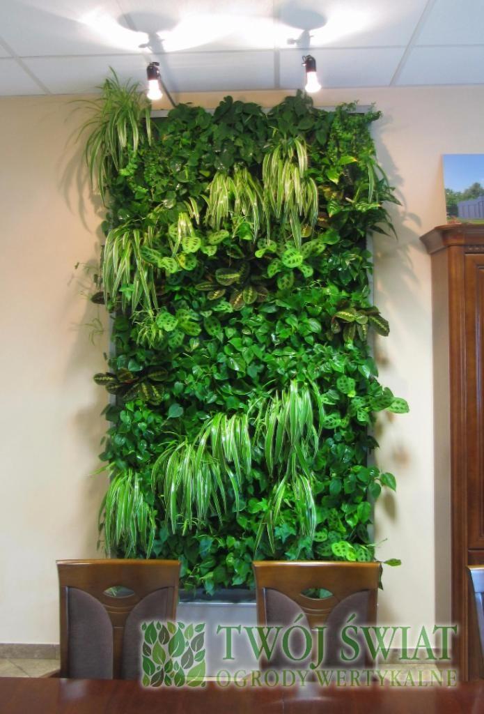 Wstawki z Zielistki. #ogrodywertykalne #plantsonwall