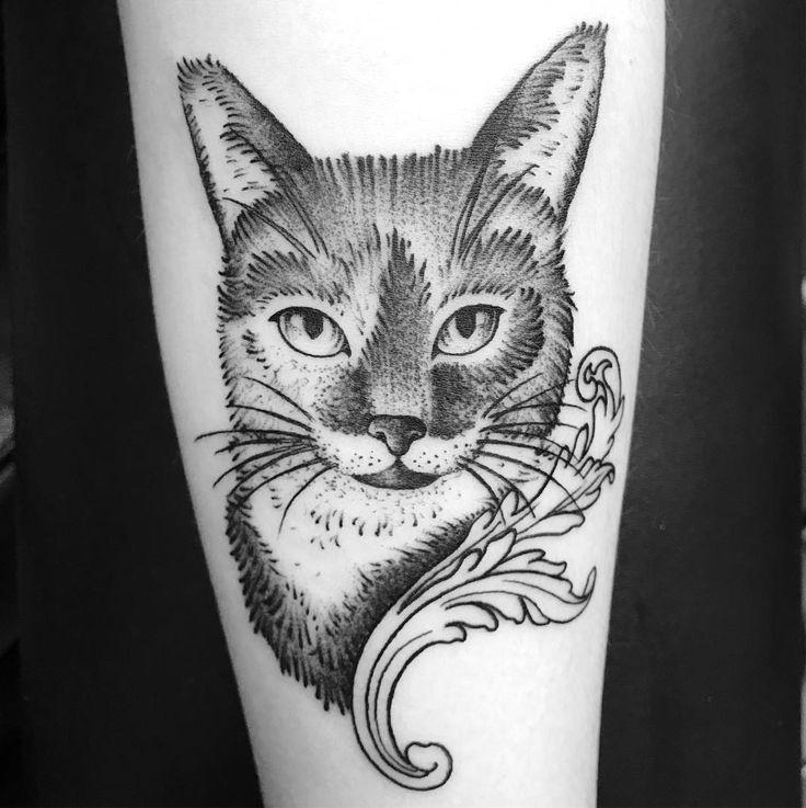 """161 Likes, 1 Comments - Barbe Noire Tattooer (@barbe_noire_tattooer) on Instagram: """"#blacktattooart #blackworkers #blackworkerssubmission #onlyblackart #blackcattattoo #cattattoo #cat…"""""""