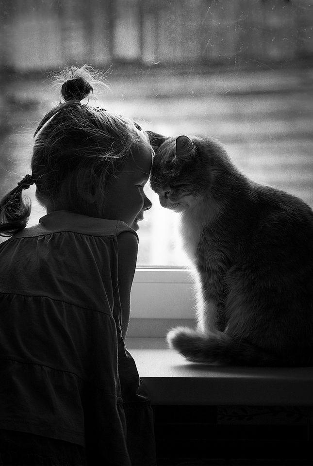 Buon giorno Piccola mia......ho voglia di dolcezza, tenerezza...........anzi ne ho bisogno. Ma tu non ci si. Ti Amo