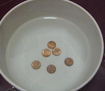 Copper kills mosquito eggs!!