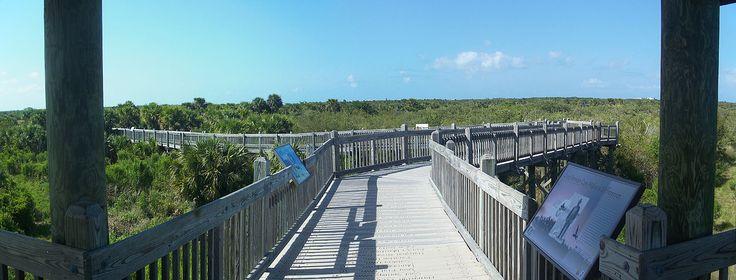 Refúgio Nacional da Vida Selvagem da Ilha do Pelicano, Orchid, Flórida, USA. Trilha centenária. Vista a partir da área de observação, no final do calçadão.  Fotografia: Ebyabe.