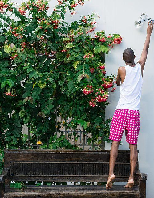Peta Odini Pink Gingham Shorts