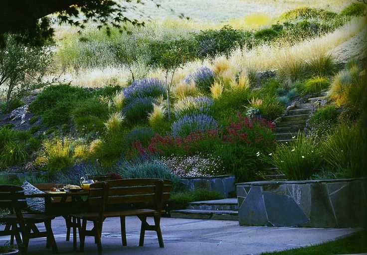 hillside landscape - inspiration for dry cimates.  Notice the surrounding landscape and how it merges with the hill garden