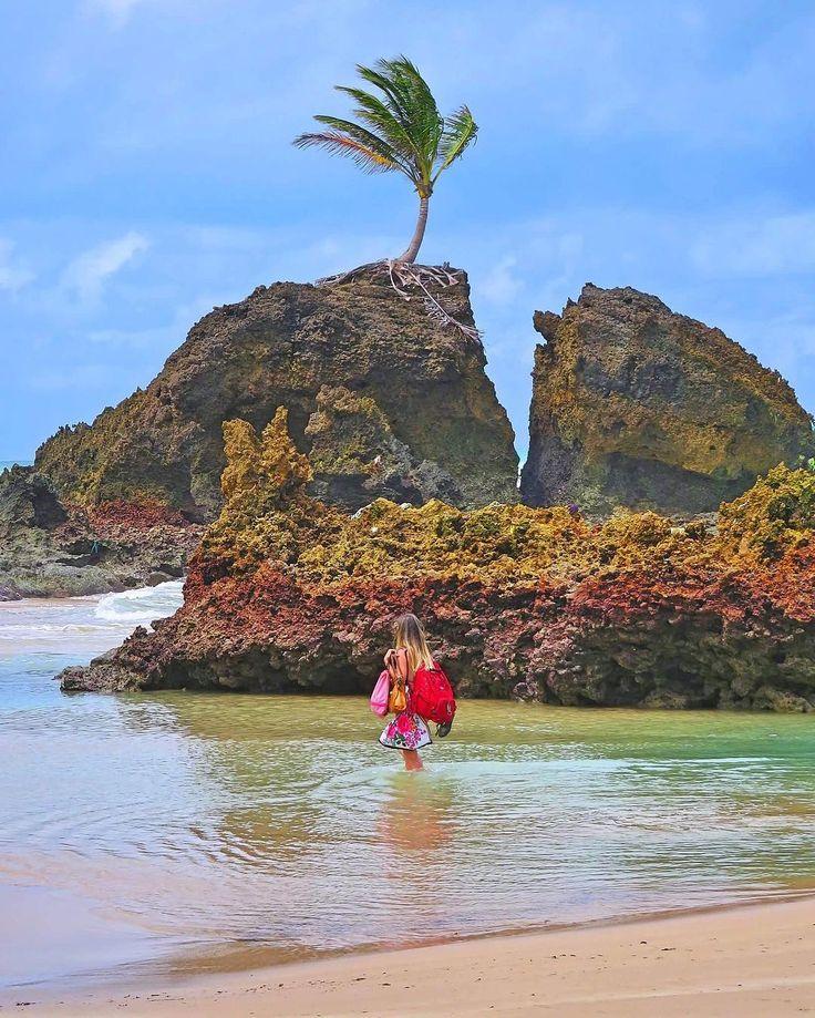 "Eduardo Fechine (@dufechine) no Instagram: ""Tambaba relax...! 🌴🌊☀️ . . . . . . . #love #brasilclique #instagood #praia #beach #awesome #gopro…"""