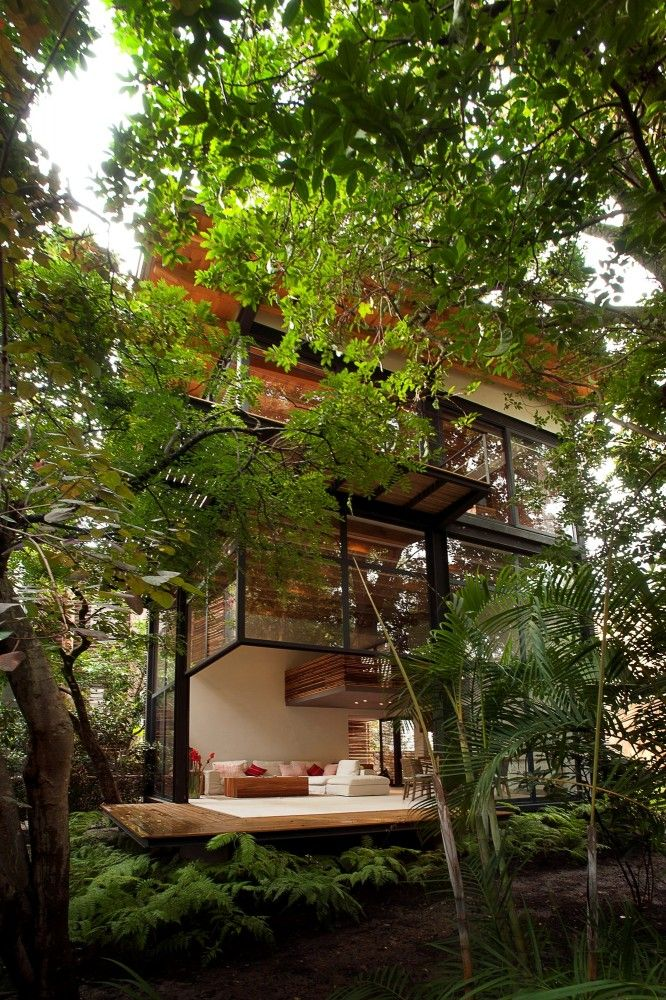 a tiny house in the trees.