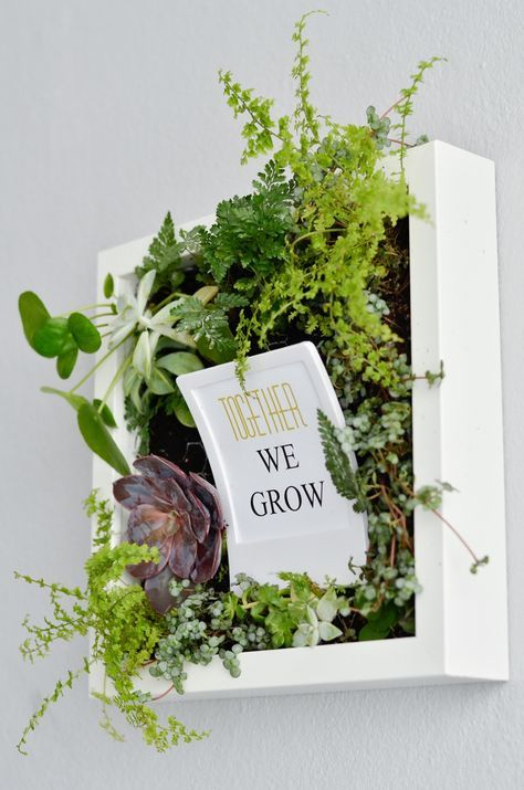 Bepflanzte Bilder für die Wand, idee, together we grow, quote, sprüche, wall, flowers, herbs hanging