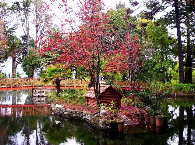 Isidora Goyenechea de Cousiño botanic garden in Lota, Chile