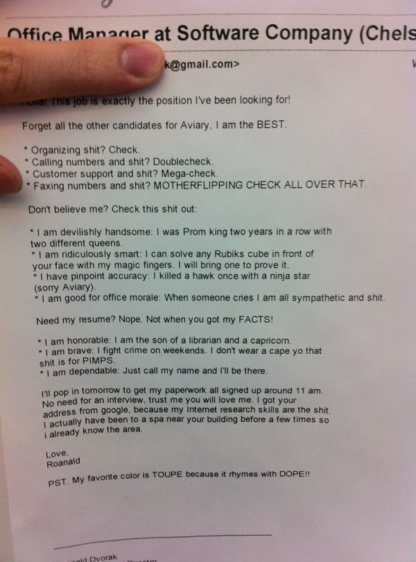 This can go in the books as one of the best resumes ever. wegotkidz