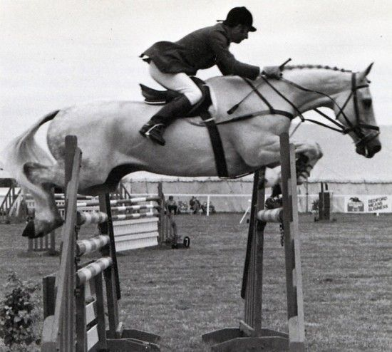 Here's Stephen Hadley on Milton at the Newbury Show in 1983. The later legendary Milton is here six years old. Stephen Hadley rode Milton for a while after Caroline Bradley's death in 1983 and before John Whitaker took him over. Stephen Hadley is now an outstanding commentator of the show jumping on FEI TV.