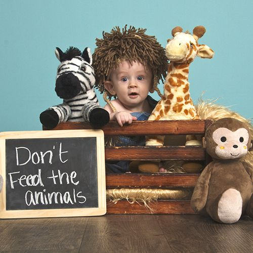 Best Prop Ideas Images On Pinterest Jcpenney Portrait Studio - 25 brilliantly geeky newborn photoshoots