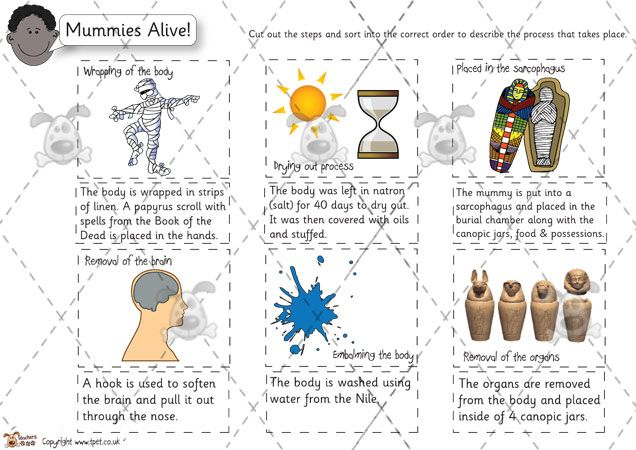 Teacher's Pet - Mummification Sequence and Description (colour) - Premium Printable Classroom Activities and Games - EYFS, KS1, KS2, ancient, egypt, pyramids, mummy, mummies