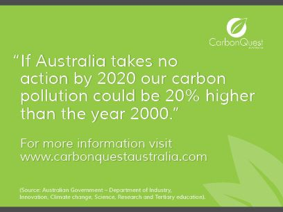 We help you make well-informed decisions on how best to participate in this low carbon economy