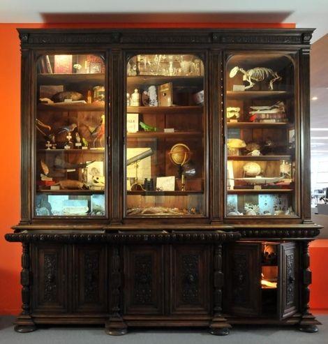 le cabinet de curiosit s design architecture int rieur pinterest science et placards. Black Bedroom Furniture Sets. Home Design Ideas