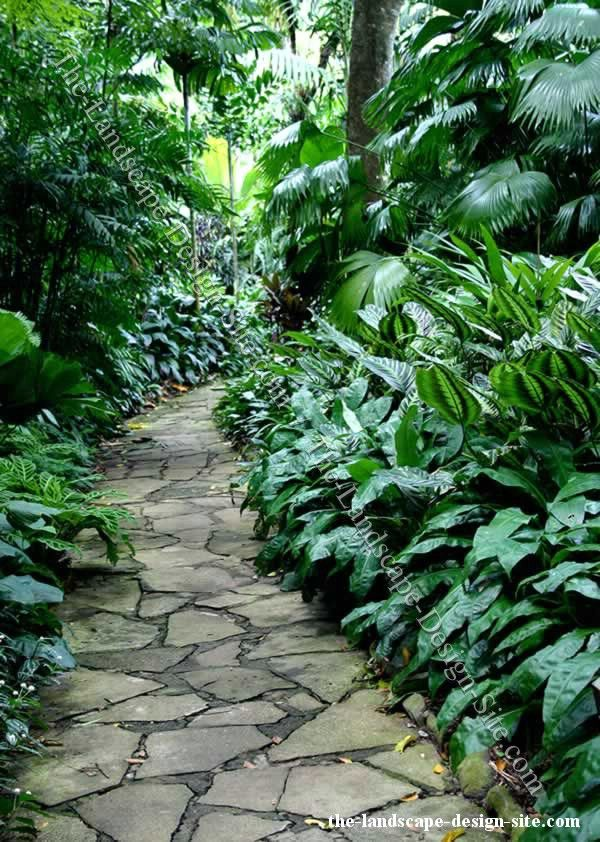 Google image result for for Jungle garden design ideas