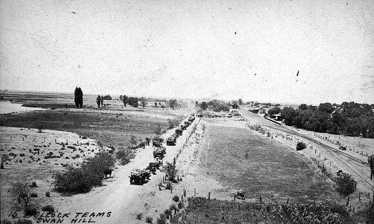 Negative - Swan Hill, Victoria, circa 1910 - Museum Victoria