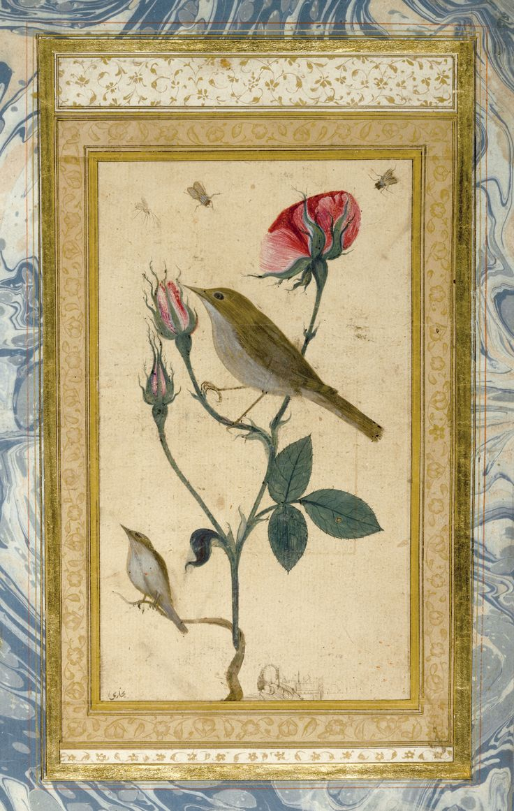 An Illustrated and Illuminated Ottoman Double-Sided Album Page: A Rose and Nightingale, Signed by 'Abdullah Bukhari, 18th century
