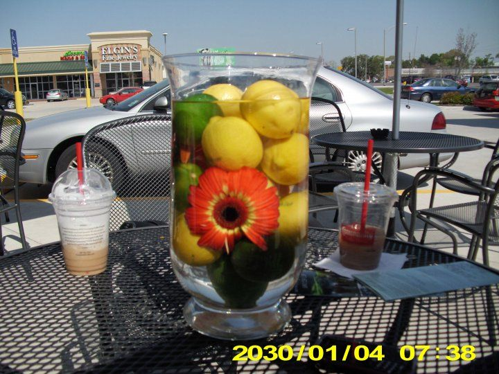 A single flower in a vase with whole lemons and limes.