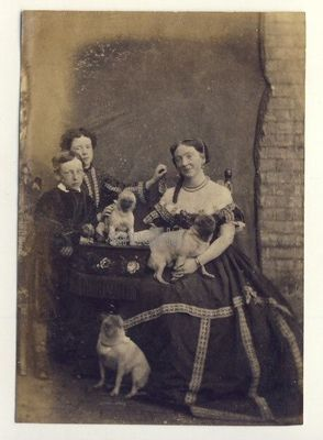 Lady with Children Pug Dogs c1860s Old Photo   eBay