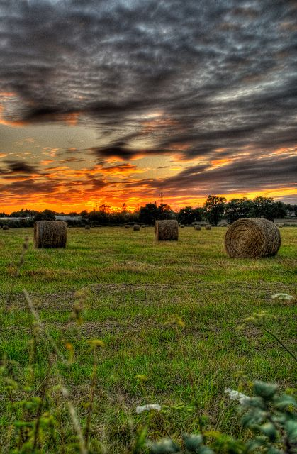 Love the colors. Simple hay field gotta love it.