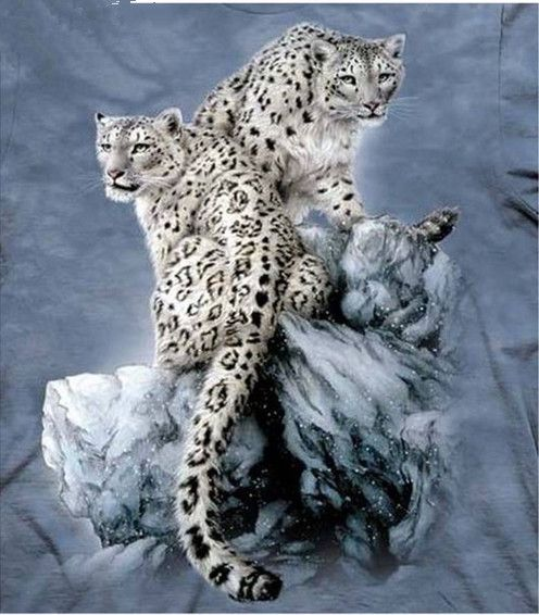 5D DIY Diamond Painting Two Leopards Crystal Diamond Painting Cross Stitch Scenic Needlework Forest Animal Home Decorative