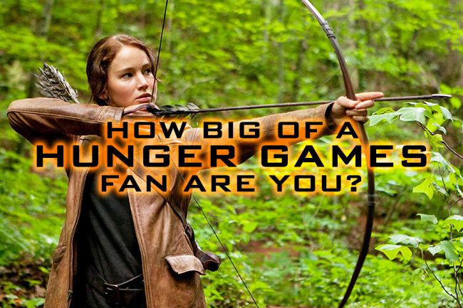 I got 100% You are a Victor — there's nothing you don't know about the Hunger Games! How Big of a 'Hunger Games' Fan Are You?