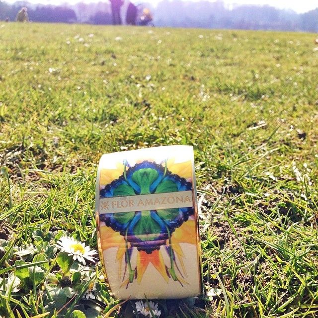 Your best friend for a picnic in the park @FLOR AMAZONA   www.floramazona.com