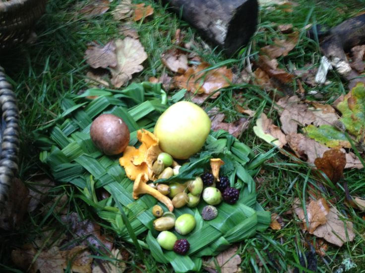 Mesolithic Food, a forage day In The Glen of the Red River, with the children of Kilmodan School, with hand-woven reed plates