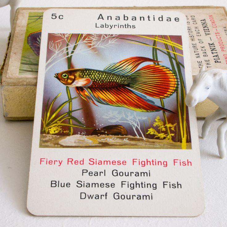 Vintage Piatnik Tropical Fish Happy Families card game (15.00 GBP) by RetroBrowns