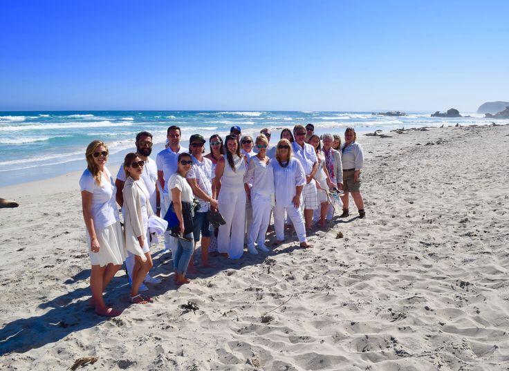 Kangaroo island wedding guest tour