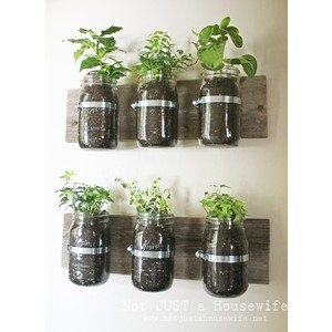 Apartment garden?! - What a fantastic Idea I so want to do this in the studio