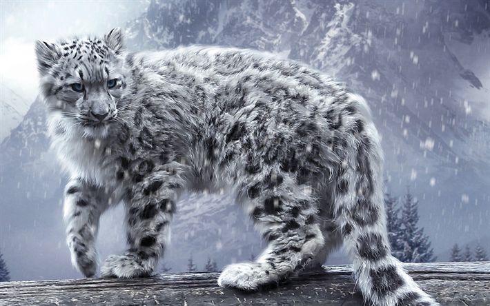 Download wallpapers white leopard, art, winter, Panthera uncia, wildlife, predators