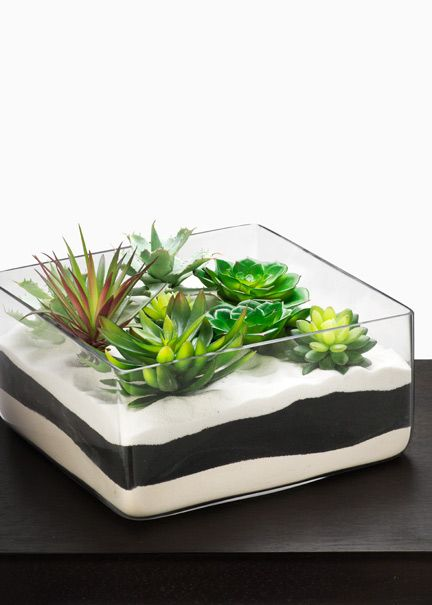 black and white sand with succulents--we can nestle votives in there or go with white flowers instead.