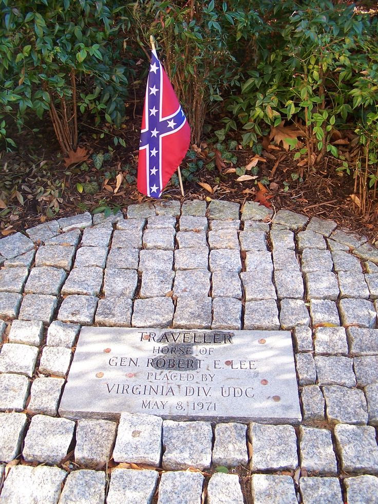 1632 best Confederate images on Pinterest