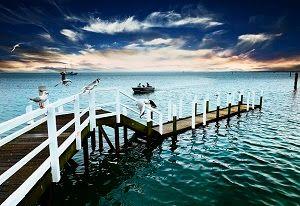 new haven Phillip island