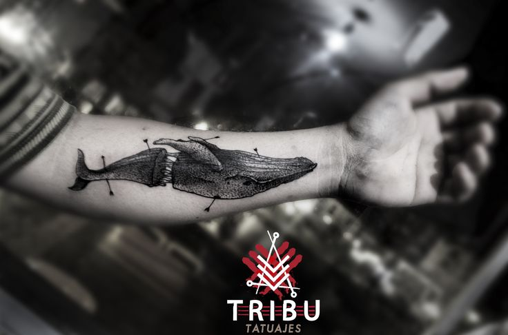 https://www.facebook.com/Tribu.tatuaje